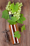 Bunch of grapes, white wine and corkscew