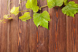Grape vine on wooden table