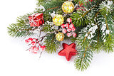 Christmas fir tree branch with holly berry and decor