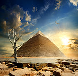 Pyramid and dry tree