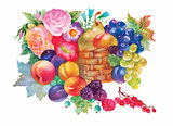 Colorful summer ripe fruits basket watercolor illustration