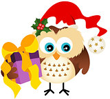 Owl with hat Santa Claus holding Christmas gift