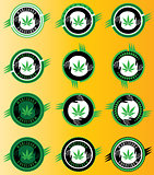 marijuana cannabis green leaf icon vector illustration