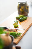 Closeup of fresh cucumbers, dill, garlic, onion and pickling jar