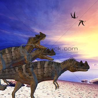 Ceratosaurus on the Prowl