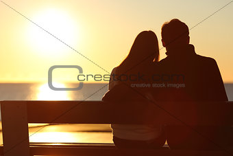 Back view of a couple watching sun on the beach