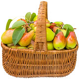 Basket with pears.