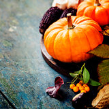 Autumn concept with seasonal fruits and vegetables