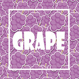 Background from Grapes. Vector Illustration