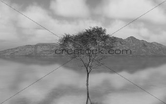3D black and white image of tree in still river