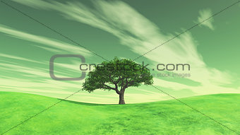 3D landscape with tree on green grass hills