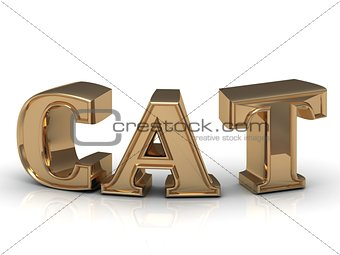 Cat - inscription of bright gold letters
