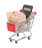 Piggy bank and envelope in shopping cart