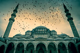 Blue Mosque against dramatic sky with birds