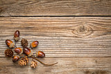 rustic grained wood with fall decoration