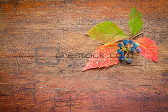 fall decoration background