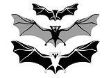 Halloween bats, vector