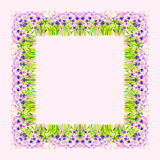 Watercolor Wild Flower Vector Borderters