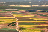 Color fields in Castile-La Mancha, Spain