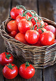Fresh ripe tomatoes