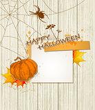 spider_halloween1