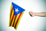 man with the Estelada, the Catalan pro-independence flag, vignet
