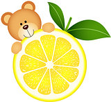 Teddy bear eating lemon slice