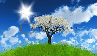 3D apple tree on grassy landscape