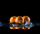 ripe oranges in water