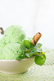 Mint ice cream in bowl