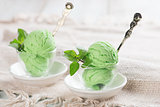 Honeydew ice cream in cup