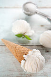 Closeup coconut ice cream cone