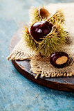 Autumn concept with Chestnuts and leaves