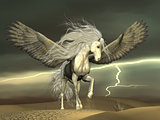 Pegasus and Dark Skies