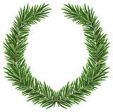Fir wreath. Green lush spruce branch. Fir branches