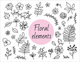 Hand drawn vector decorative floral elements.
