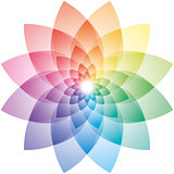 Lotus Flower Color Wheel