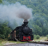 Mocanita wood-burning locomotive