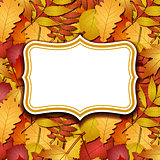 Frame labels on background with autumn leaves.