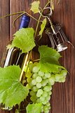 Bunch of grapes, white wine and corkscrew