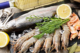 Fresh raw sea food with spices and white wine