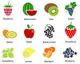 Set of Fruit Icons With Title