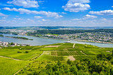 Rhine river and green vineyards near Bingen am Rhein