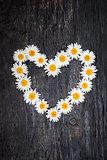 Daisy heart on dark wood