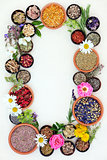 Medicinal Healing Herbs and Flowers