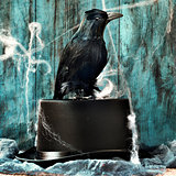 crow on a top hat in a dismal scene