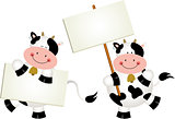 Couple cows with signboards