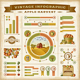 Vintage apple harvest infographic set