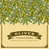 Retro olive harvest card