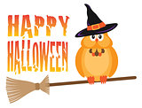 Halloween Owl on Broomstick Illustration